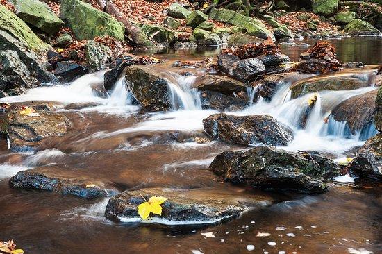 Hockai, Belgien: Water & rocks