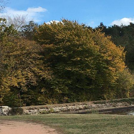 Bilde fra Saint-Bonnet-Troncais