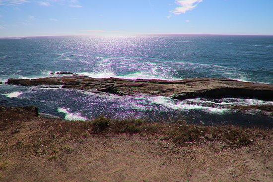 Shore Acres State Park صورة فوتوغرافية