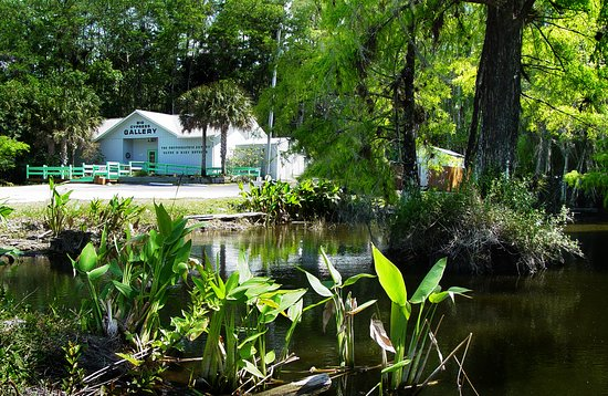 Ochopee, FL: Looking on to Big Cypress Gallery from Tamiami Trail.