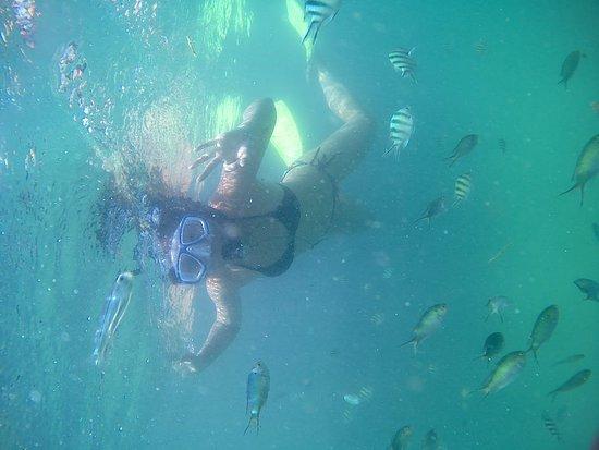 Snorkeling activities in Bintan