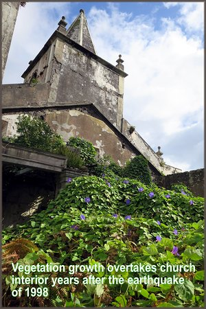 Vegetation claims the remains of the church interior in Pedro Miguel, Faial