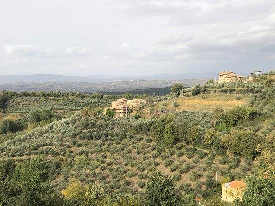 Canalicchio Photo