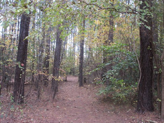 Queen Anne, MD: Different trails for different likes