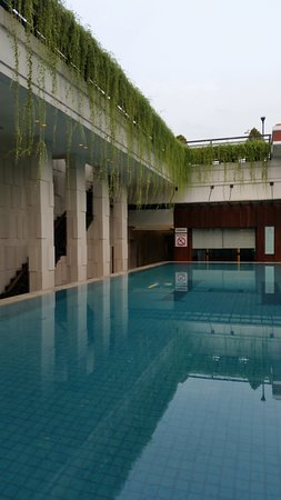 The pool - nice and empty for swimming laps