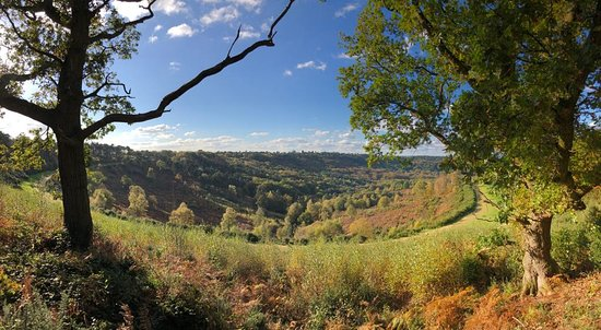 Hindhead Commons and the Devil's Punch Bowl: The bowl!