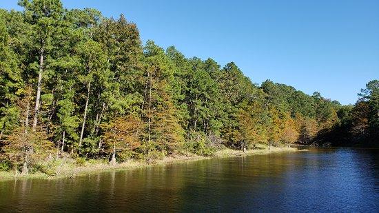 Anacoco, Louisiane: Park view
