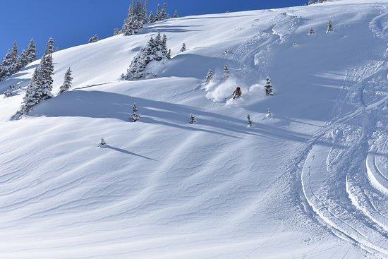 Aspen Expeditions Worldwide