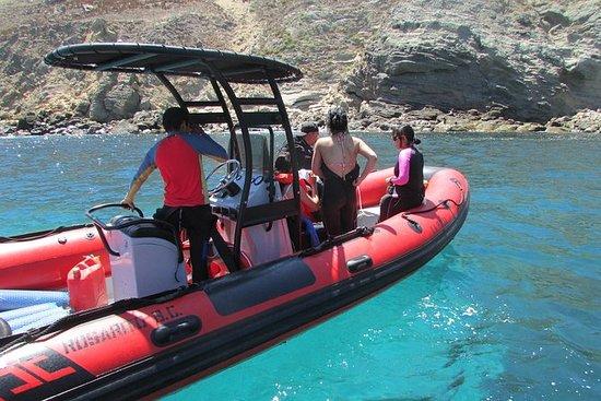 Scuba Diving Tour nelle Isole Coronado