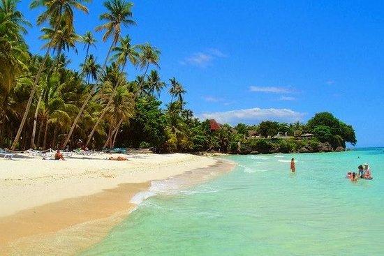 ボホール島パングラオ島ツアー
