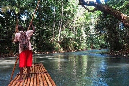 Excursión privada en bote por el río...