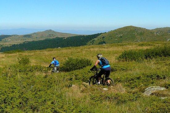 Vitosha Trail Hunter Bike Tour fra...