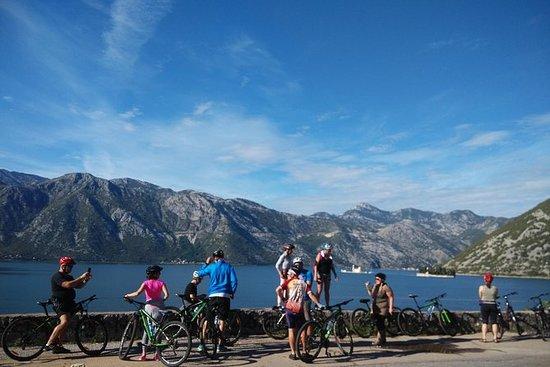 Alquiler de bicicletas: Cycle the Bay...