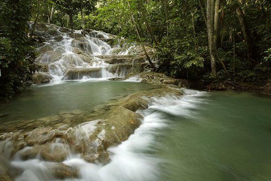 Dunn's River Falls Private Tour From...