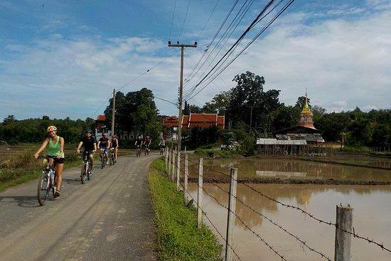 チェンマイのMae Sa Valleyでの終日ハイキングと自転車ツアー