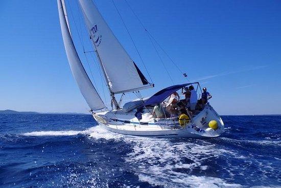 Excursión en barco del archipiélago...