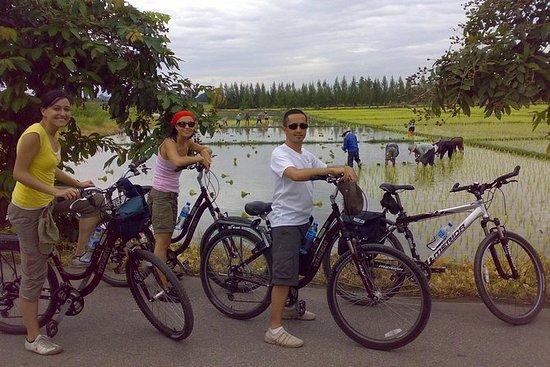 Chiang Mai Paradise Full-Day Cycling ...