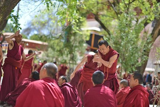 Excursión de un día: el Tíbet Drepung...