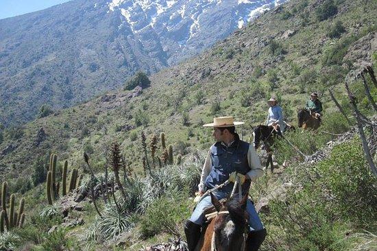 ピクニックでアンデス山麓の乗馬ツアー