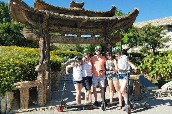 Excursión en scooter eléctrico por...