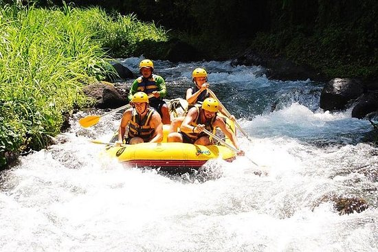 Bali White-Water Rafting and Coffee...