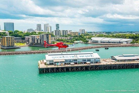 Tour in elicottero panoramico di 10