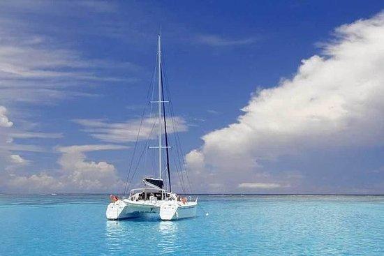 Croisière d'une journée en catamaran...