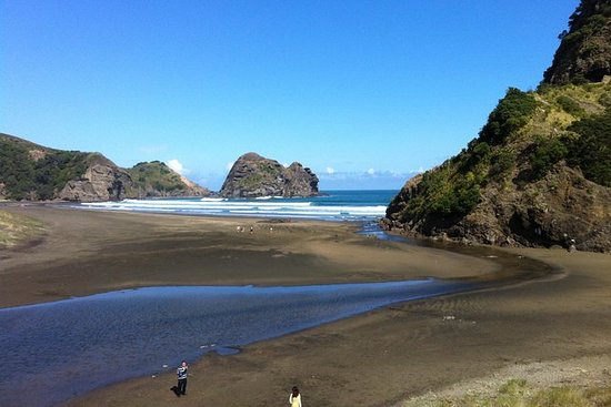 Piha og Karekare Rainforest Wine Tour...