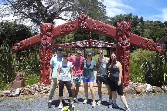Balade et visite à vélo à Waiheke...