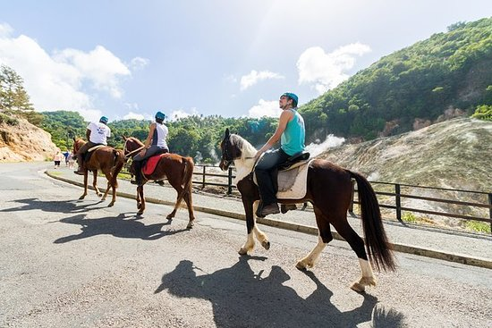 2.5-hour Horseback Ride and Volcano...