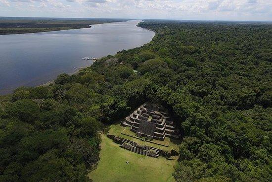 Lamanai Maya Temple and Baboon...