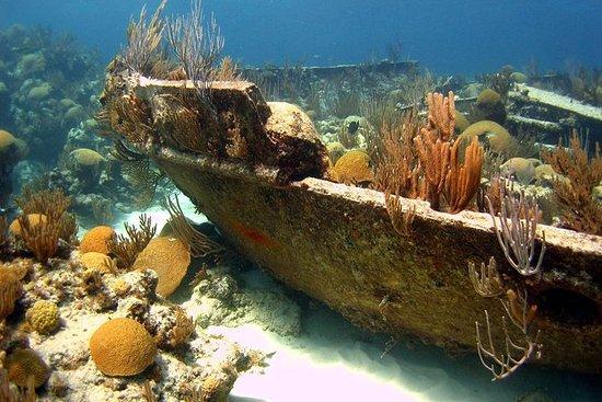 Shipwreck Snorkel in Bermuda