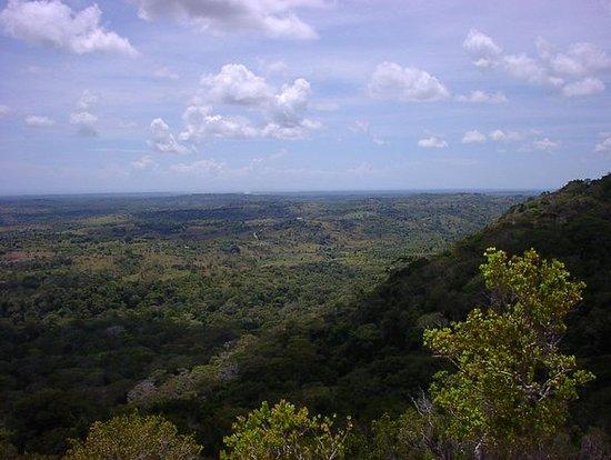 Small-Group Tour: Shimba Hills National...