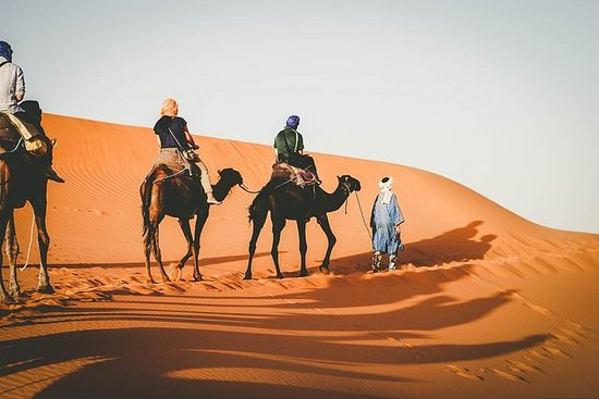 Sunset Camel Ride i Merzouga Dunes