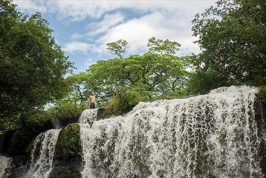 Parque Nacional de Palo Verde e...