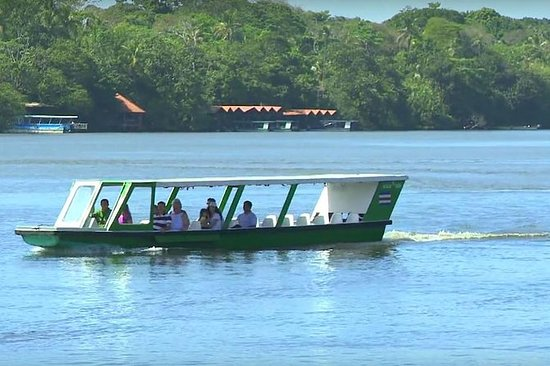 Tortuguero National Park Day Trip fra...