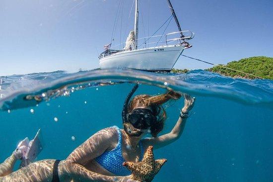 Liten gruppe seiling og snorkling...