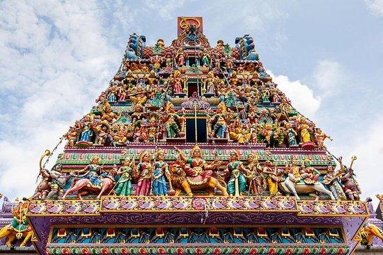リトルインディアの宝石を発見シンガポール:感覚の饗宴