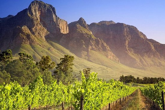 Cape Winelands Guided Private Day...