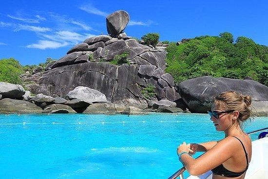 Ganztägige Tour Similan Island mit...