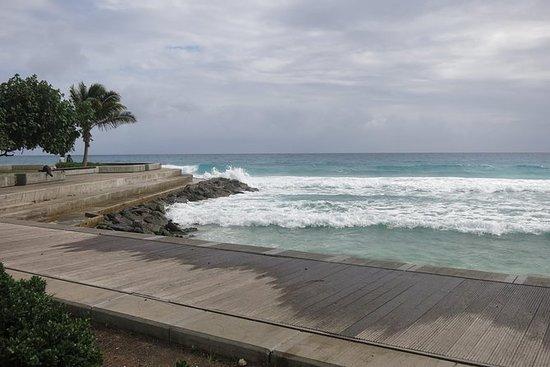 Privé huwelijksreis in Barbados