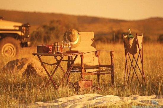 Full-Day Kruger Wildlife Safari fra...