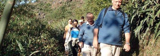 Privat Trek fra Rishikesh til...