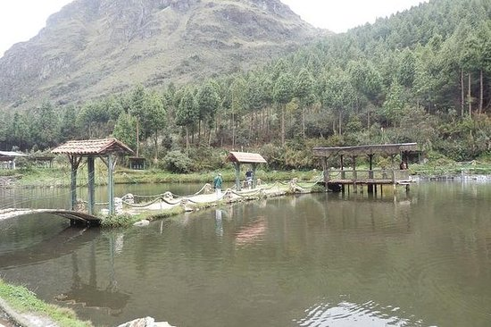 Private Fishing Full-Day Tour in...