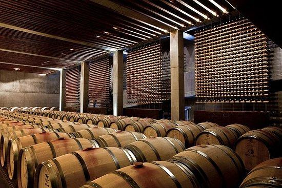 里斯本葡萄酒爱好者私人旅游