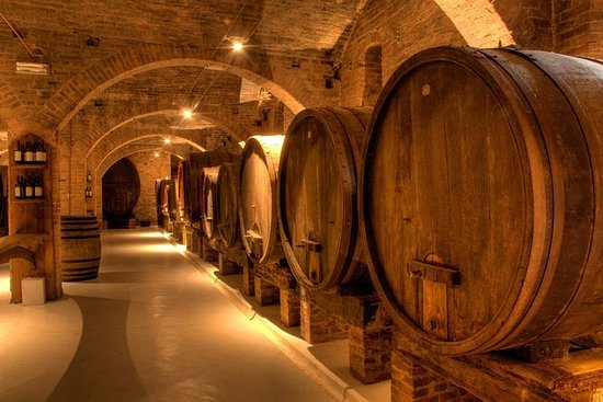 Primitivo and Negramaro Wine Tour...