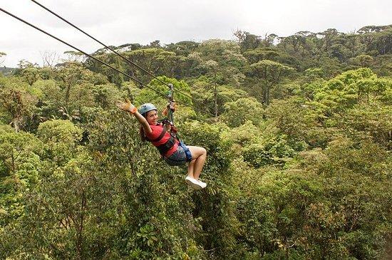 Excursão Combo de Aventura na Floresta...