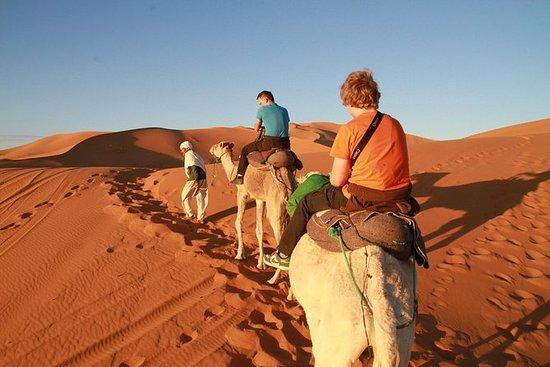 4WD Erg Chigaga Sahara Desert Day...