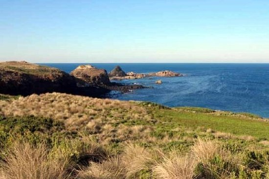 Phillip Island Tour Including Cape Woolamai Walking Trail