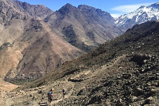 Full-Day Guided Running Tour in the...